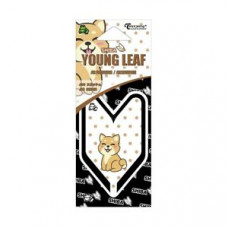 Treefrog Young Leaf Shiba JDM Squash Scent Air Freshener