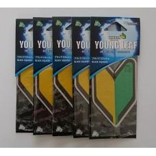 Treefrog Young Leaf Wakaba Black Squash Scent Air Freshener Bundle (5 x air fresheners)